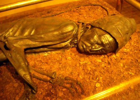 "The world famous ""Tollund Man"" displayed at Silkeborg museum. The ""Tollund Man""  is one of best preserved human beings of ancient times."