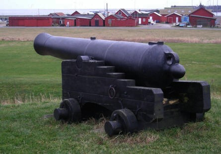 One of the many old canons outside Hals Museum.