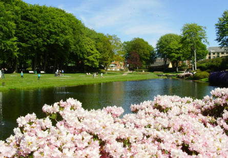 A view over a section of the Rhododendron Park in Brønderslev.