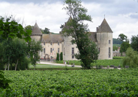 Château de Savigny-lès-Beaune seen from the vineyard grounds.