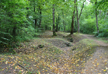 One of the many World War I trenches that still are visible near Fort de Vaux - outside Verdun.