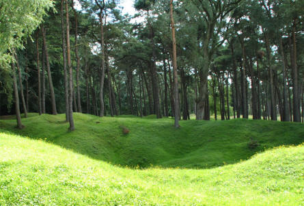 At the World War I memorial park - next to the Canadian National Vimy Memorial at Vimy Ridge - huge bomb craters from World War I are still visible.