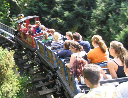 "The alpine coaster ""Enzian"" at Europa Park gives you a very speedy ride."