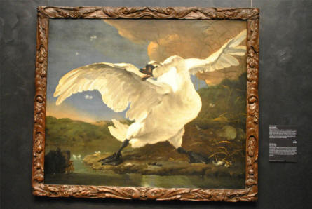 "A classic painting of ""The Threatened Swan"" by Jan Asselijn displayed at the Rijksmuseum in Amsterdam."