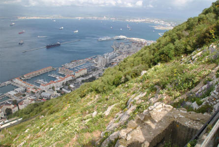 A view of the city of Gibraltar from the Rock of Gibraltar.